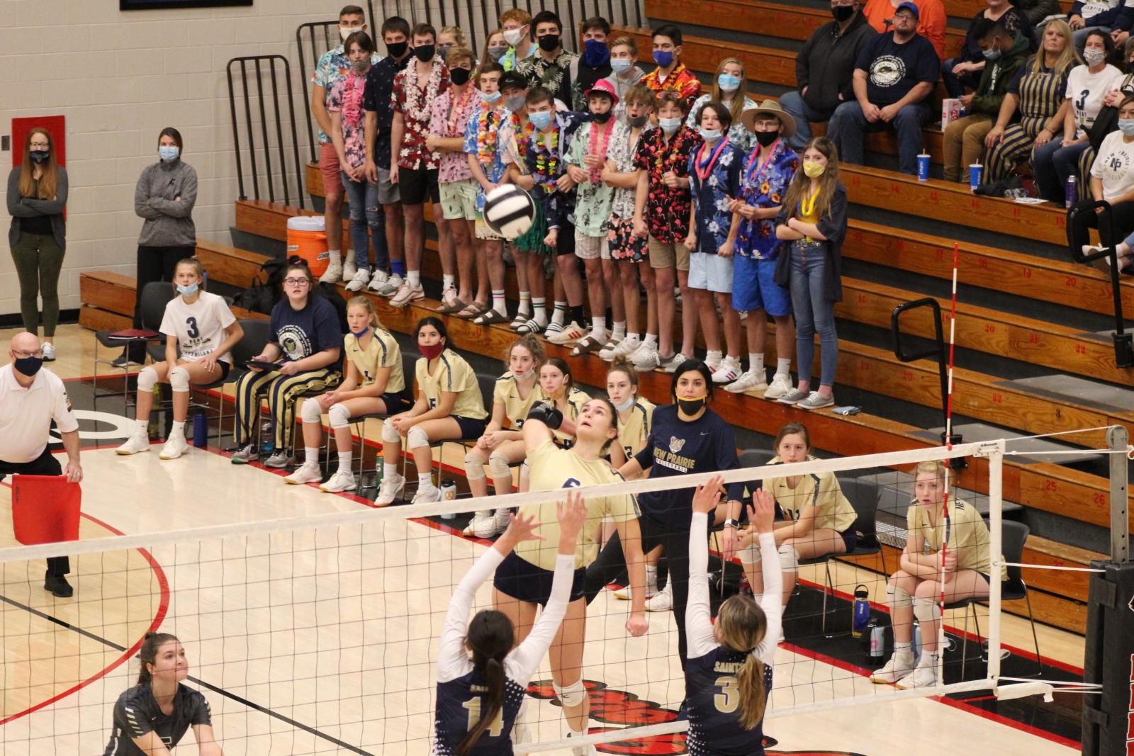 Varsity Volleyball @ IHSAA Semi-State vs. FW Bishop Dwenger  10/31/20  (Photo Gallery)