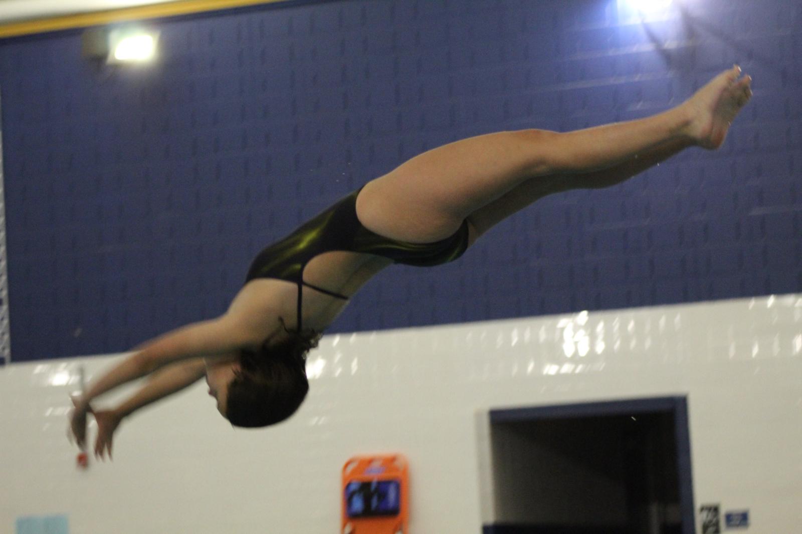 Girls Swimming & Diving vs. Elkhart 11/19/20  (Photo Gallery)