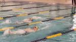 Live Stream Link: Boys / Girls Swimming & Diving vs. Mishawaka Marian 12/3/20