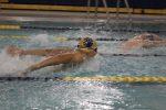 Live Stream Link: Boys / Girls Swimming & Diving vs. Michigan City  12/5/20