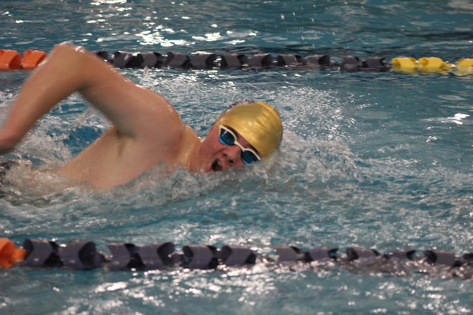 Swimming & Diving vs. Michigan City 12/5/20  (Photo Gallery 2 of 2)
