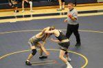 Wrestling vs. Penn 1/6/20 (Photo Gallery)