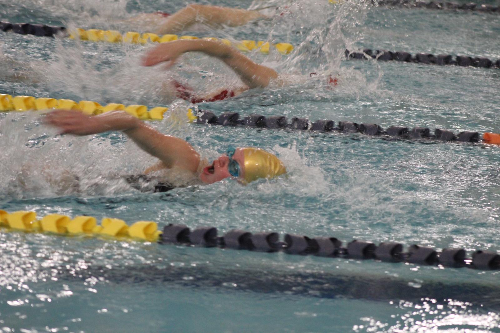 Swimming & Diving vs. SB Adams 1/7/21 (Photo Gallery)