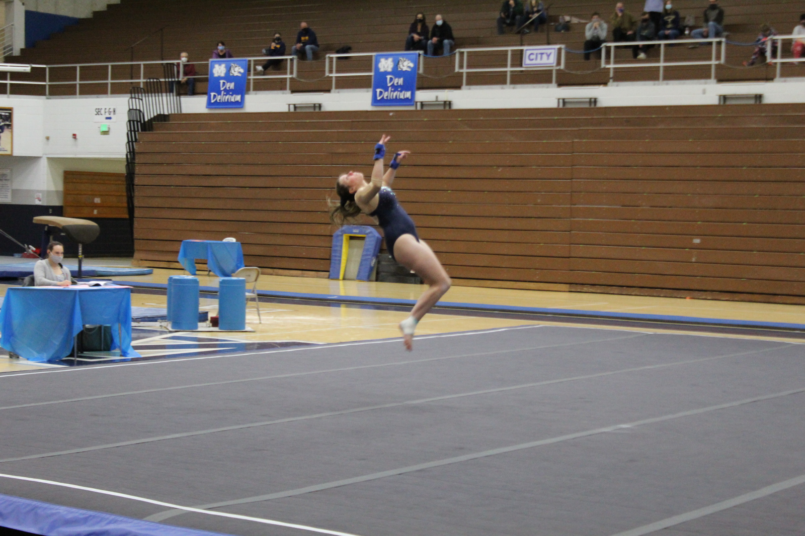 Gymnastics @ Michigan City 1/11/21  (Photo Gallery 1 of 2)