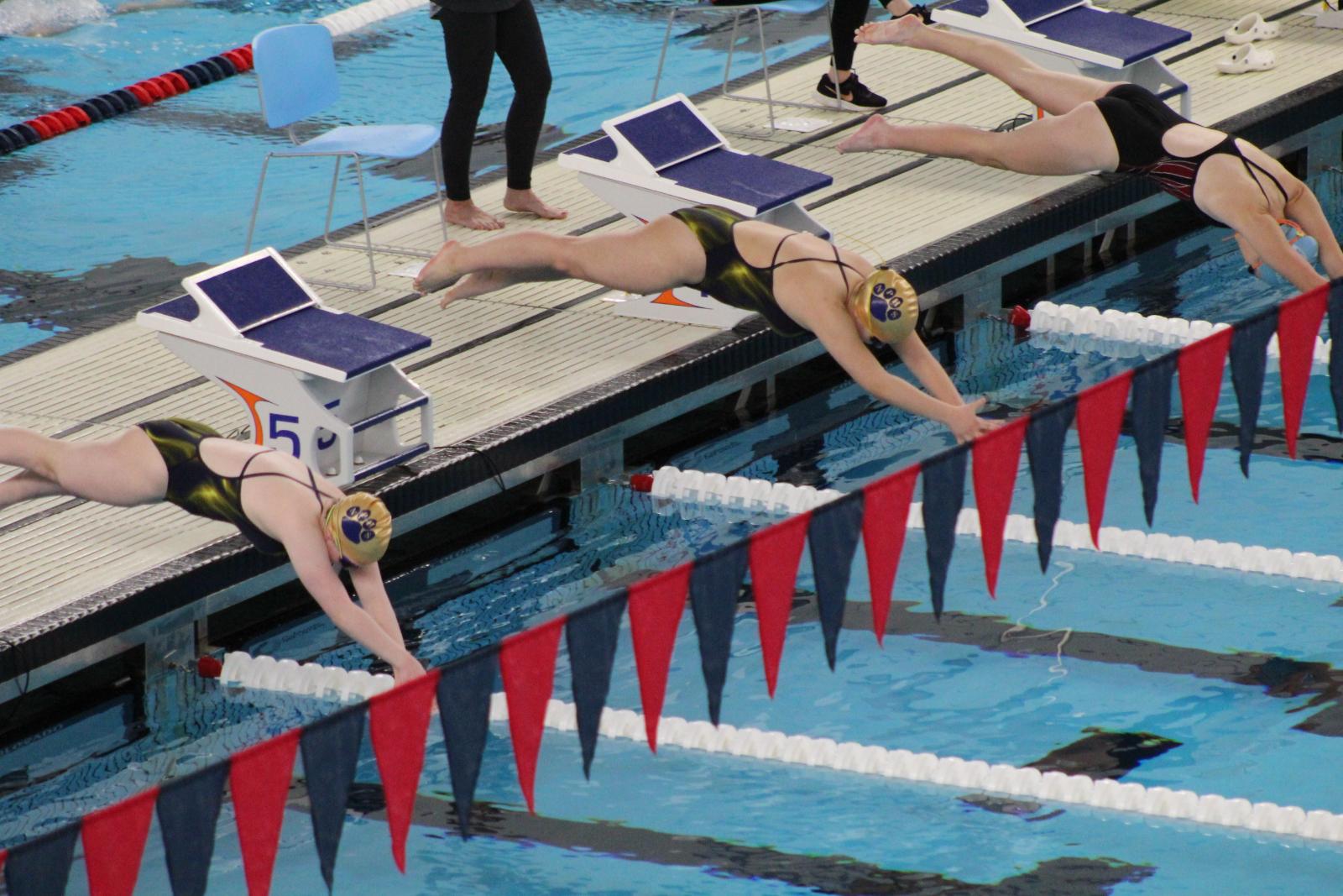 Girls Swimming @ NIC Championships  1/16/21  (Photo Gallery)