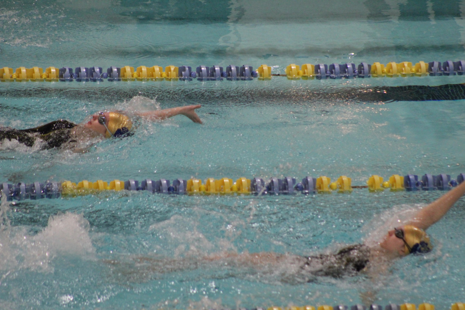 Girls Swimming @ IHSAA Sectional Prelims 2/4/21  (Photo Gallery)