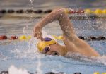 South Bend Tribune:  IHSAA Boys Swim Sectional Prelims (Photo Gallery)