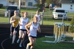 Lady Cougars Defeat Wildcats