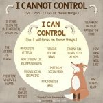"Controlling the ""Controllables"""