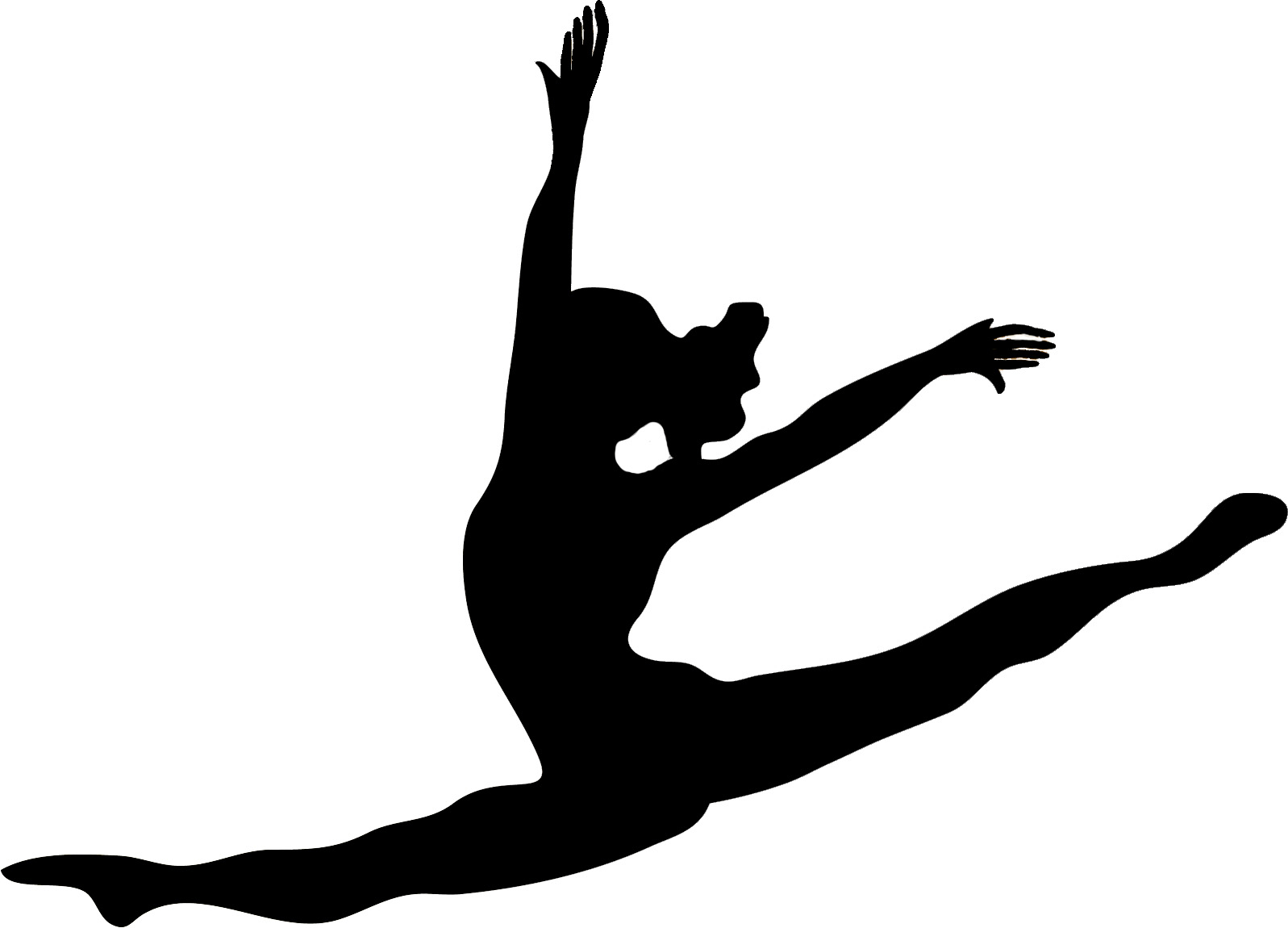 2021-22 WSHS Dance Team Tryouts