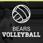 Logo for the MJHS volleyball team webpage