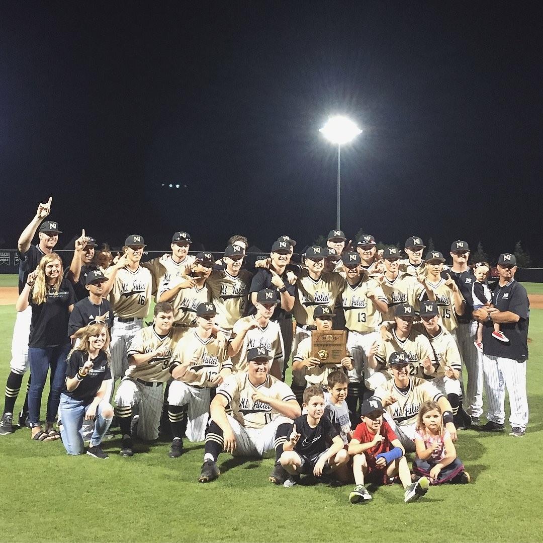 Baseball Team Wins District Tournament