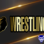 BEARS FALL IN WILSON CO. DUALS