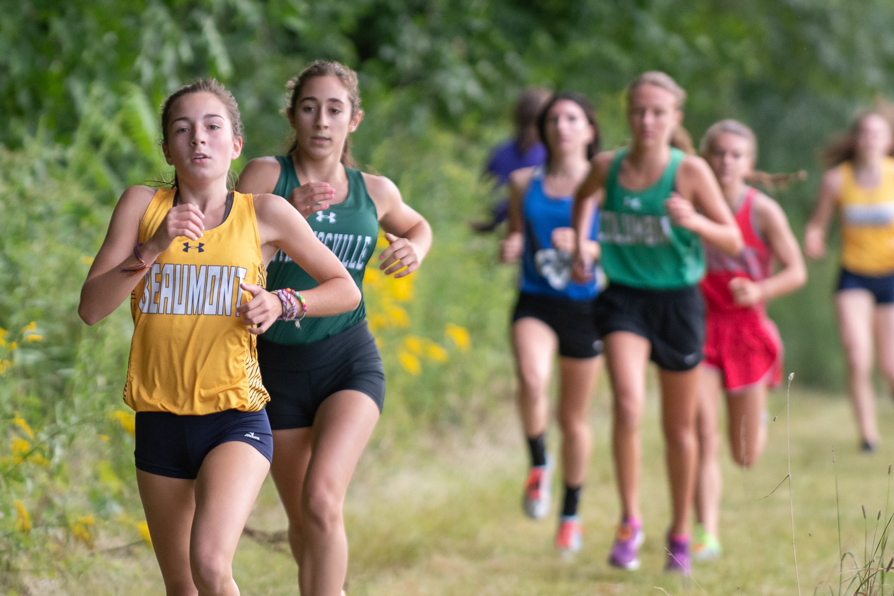 Cross Country Team Wins District Title, Ciecierski Repeats as Champ