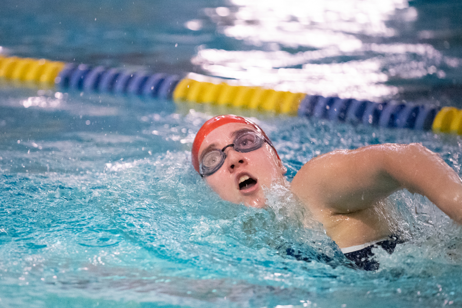 NCL Swimming & Diving Championship Info