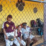 Panther Softball – State bound