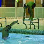 Photo gallery: North Dallas swim team practice — 12-4-2019