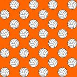 2019 Volleyball Tryouts