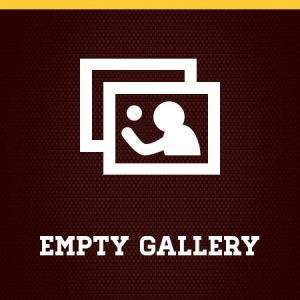 No Sport Galleries Added