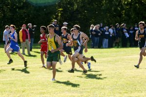 Cross Country action shots