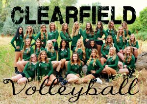 Clearfield Volleyball 2017
