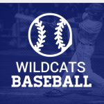 Wildcats fall to Bees in district opener