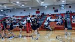 Leps fall in 5 to Fitch
