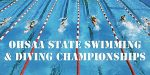 Wauseon to send 9 swimmers and 1 diver to state