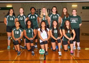 JV2 Volleyball – Team Pic 2014