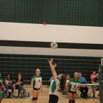 MS Volleyball vs Greenville gallery
