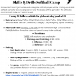 Softball Skills and Drills Camp