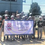 Englewood Little League District Champs