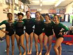 Gymnastics Team Places 9th at Troy Invitational