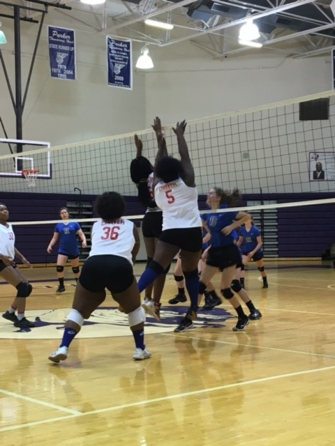 Volleyball Team Holding Open Tryouts