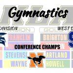 Gymnastics – Division Champs!