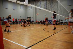2015-2016 Volleyball