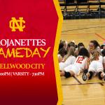 Girls Basketball vs Ellwood City