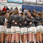 2/8/2019 Girls Varsity Basketball vs Davis