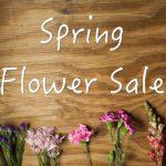 Fishers Softball Spring Flower Sale