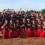 Hannah Mays dominates on mound, delivers big hits to lead Fishers to sectional title