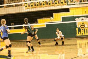 2014 Varsity Volleyball
