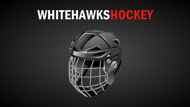 White Hawks Girls Hockey Loses Two on the Road