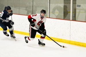 Boys Hockey vs. Hibbing/Chisholm – 11.22.14