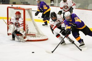Boys Hockey vs. Rochester Lourdes 12-4-14