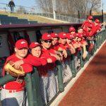 White Hawks, Cardinals Split U of M Doubleheader