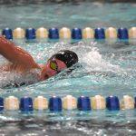 White Hawks Win at Watertown Dual Swim Meet