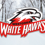 Weather-related Activities Cancellations