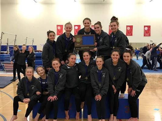 Watertown-Mayer/Mound Westonka gymnastics team