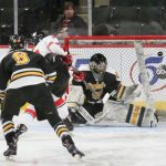 Girls Hockey Advances in State Tourney