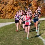 White Hawks Compete in CC Sections, Sunnarborg Advances to State